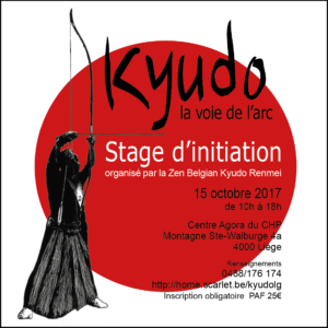 Stage initiation Liège 2017